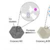 研究人员设计高活性无PGM钴基催化剂