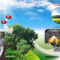 韩国利用废纸箱制备生物柴油 可减少车辆温室气体排放