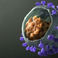 科学家公布了有希望的新型HIV疫苗策略