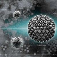 新模型预测哪些动物病毒可能在人类中传播