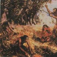 人类祖先不应该为非洲古代哺乳动物的灭绝负责