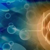 使用可生物降解的支架进行干细胞治疗