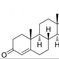 来自意外来源的黄体酮可能会影响流产的风险